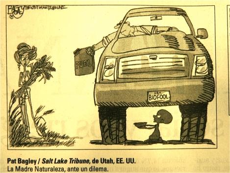 post-biocombustibles